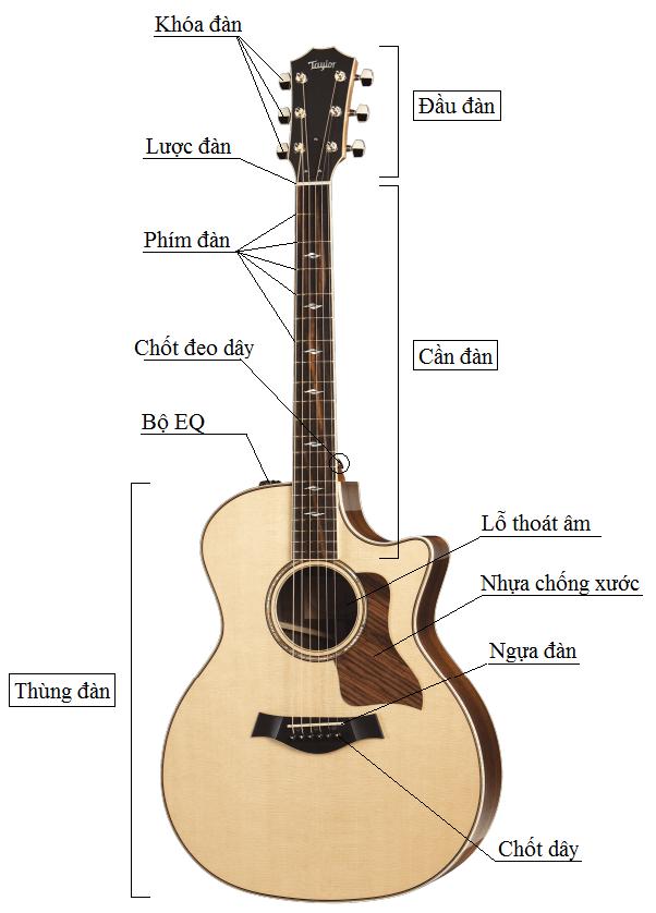 Kết quả hình ảnh cho cấu tạo đàn guitar
